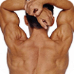 Muscular man streching his back