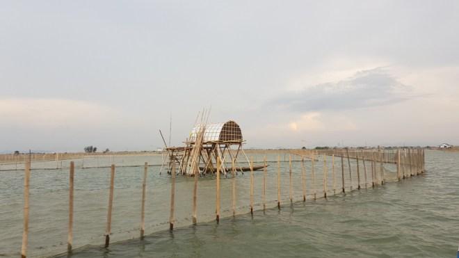 Tam-Giang-Lagoon-Tour-Hoi-An-Private-Car