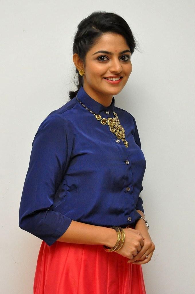 Nikhila Vimal Wiki, Age, Biography, Movies, and Beautiful Photos 127