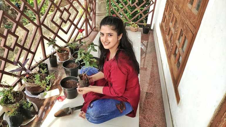Shehna Noushad Wiki, Age, Biography, Movies, and Beautiful Photos 100