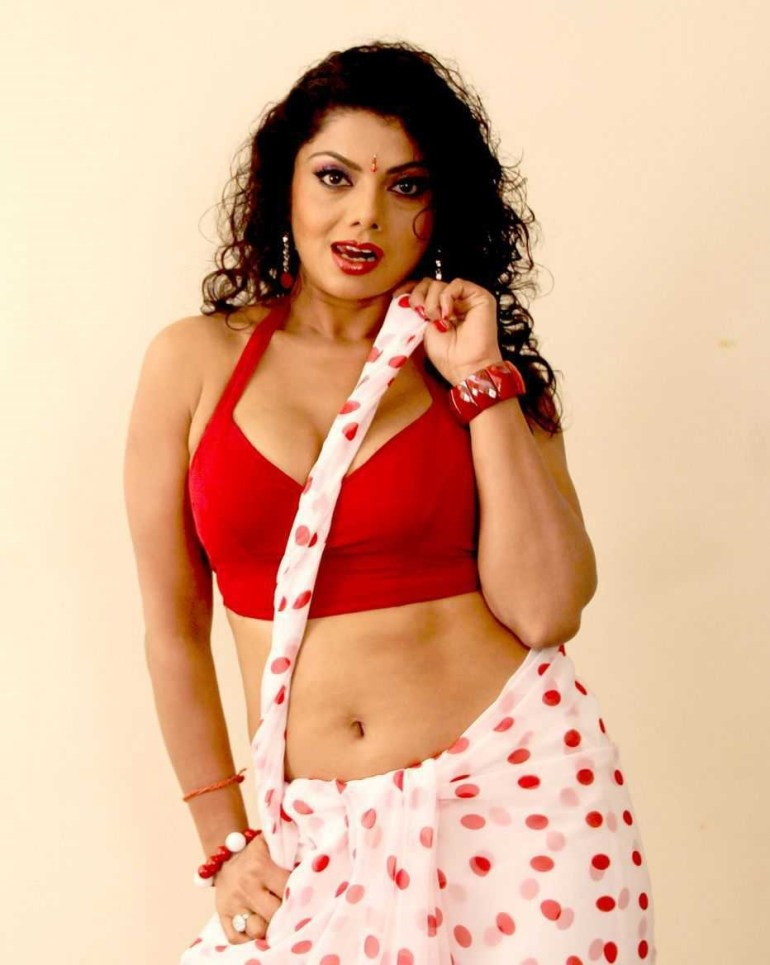 Check out this Popular South Indian B-Grade Glamorous Actresses 132