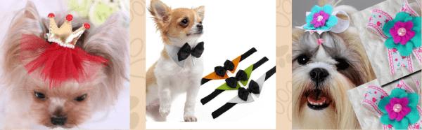 Laços para Pet - Laços 2