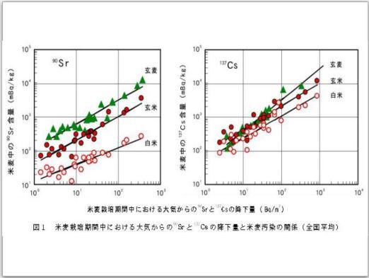 チェルノブイリ事故後の日本の米麦中のストロンチウムとセシウム