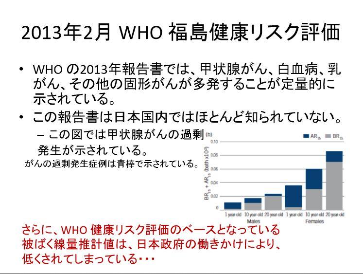 2013年2月WHO福島健康リスク評価