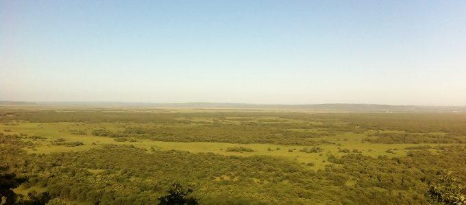 釧路湿原展望台の景色。外国に来たみたい!これは絶景ですよ!