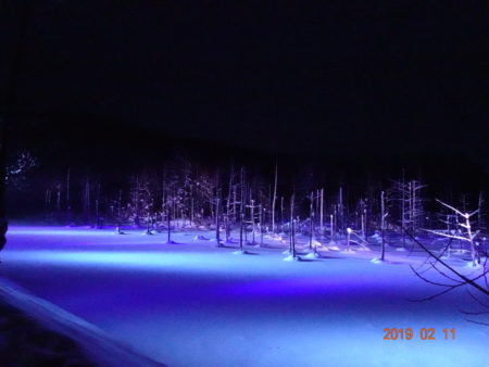 青い池をライトアップ