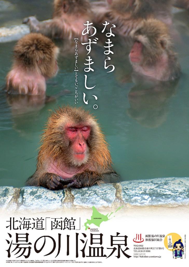 函館湯の川温泉旅館協同組合ではポスターを制作してPR中です