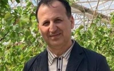 Azərbaycandan xaricə sahibkar axını: qarşısını necə almalı? | Hokm.Az