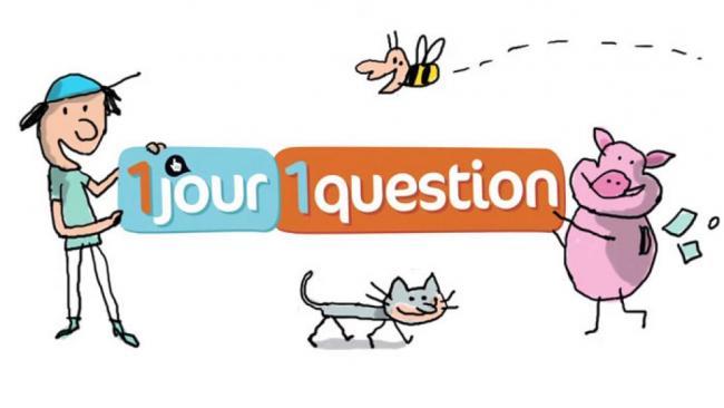 學法文 1-jour-1-question