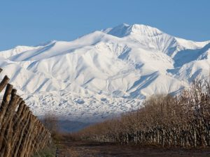 Top Things to Do in MENDOZA ARGENTINA