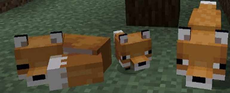 How to Tame a Fox in Minecraft
