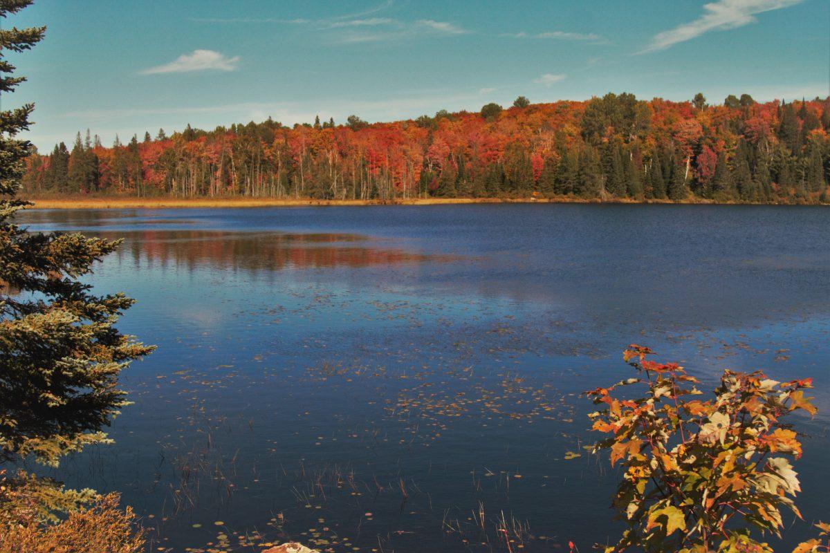 Algonquin Provincial Park during fall
