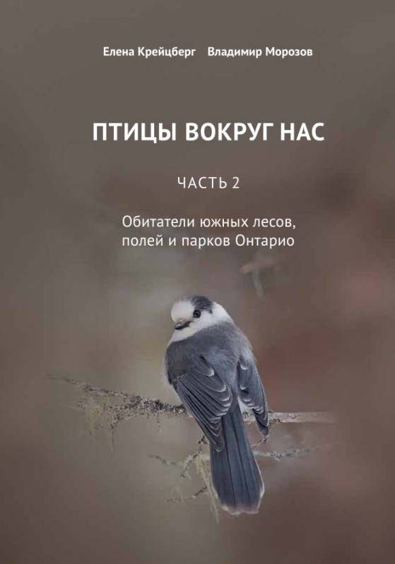 cover - russian book about birds