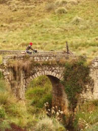 Brücke1.JPG