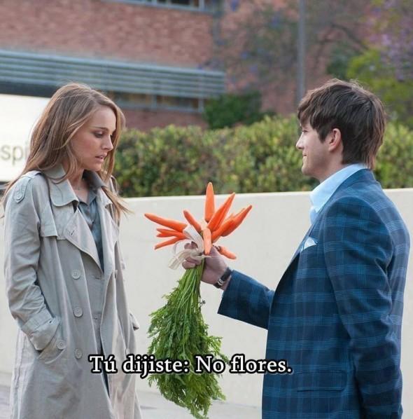 no flores