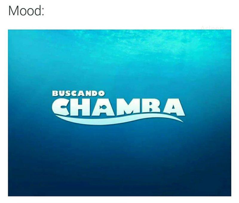 buscando-chamba