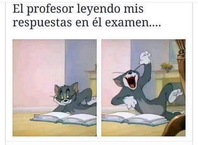 el-profesor