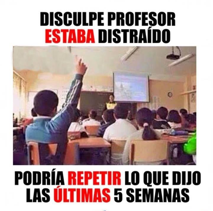 disculpe-profesor