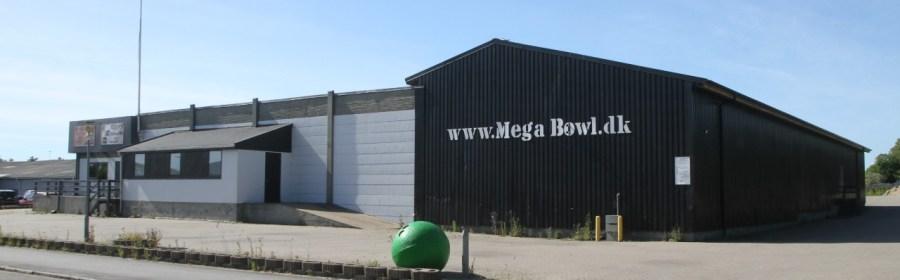 Mega Bowl, Moske, Kulturcenter