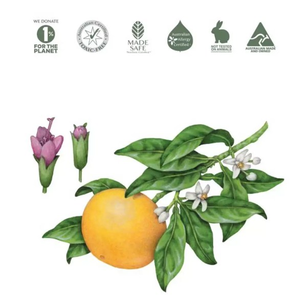 Grapefruit and Peppermint natural ingredients for Koala Eco