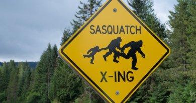 Törvényjavaslat készült a Bigfoot vadászidényről