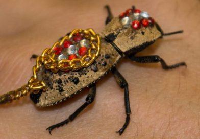 Sznob vasárnap – Ékszert élő bogarakból? Miért is ne!