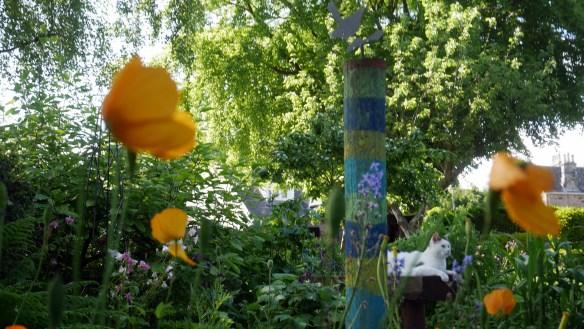Mossgrove garden, 14 June 2015 (5)