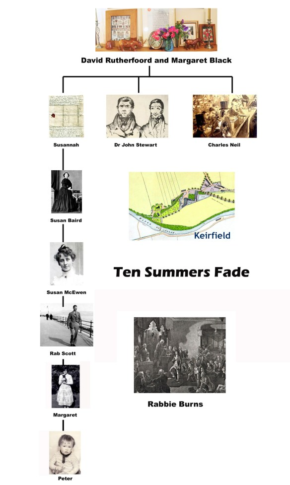 Ten Summers fade, Rutherfords, Bridge of Allan, tree
