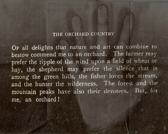orchard-country-2012-peters-hand-10-aug-1977