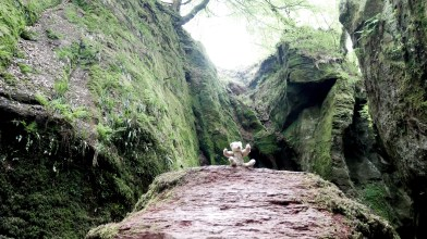 Devil's Pulpit, Sunday 20 May 2018 (15)