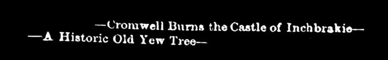 Cromwell burns Inchbrakie castle - a Historic Yew tree