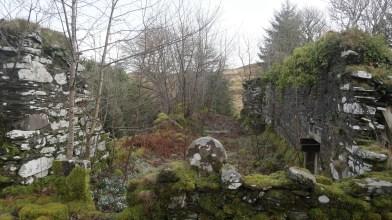 Kilneuair, South Loch Awe side - Monday 11 February 2019 (15)