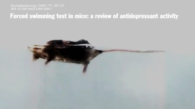 PORSOLT (Forced Swimming Test) antidepressant research (12)