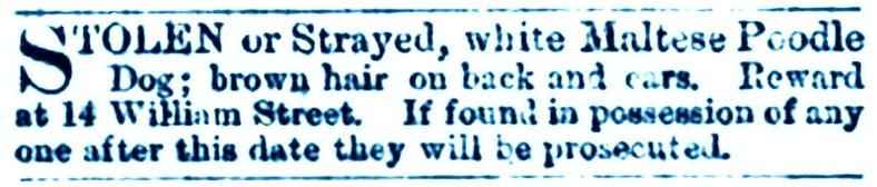 14 July 1873