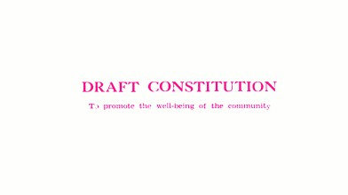 Draft Constitution