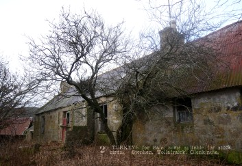 Tollafraick, Glenkindie, Strathdon - Thursday 2nd January 2020 (6)