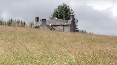 Glenour [Glenover] farm, South Ayrshire - Monday 20 July 2020 (8)