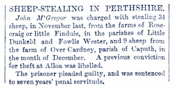March 1878 Rosecraig, Strathbraan, sheep stealing