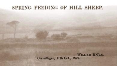 1879 William McCaw, Cormilligan (2)