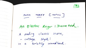 Aberdeen Arms, Tarland - An electric razor [donated] poem 1b