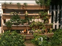 Awesome Pallet Vertical Gardens Pallets Design