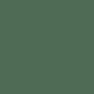 SW 6460 Kale Green