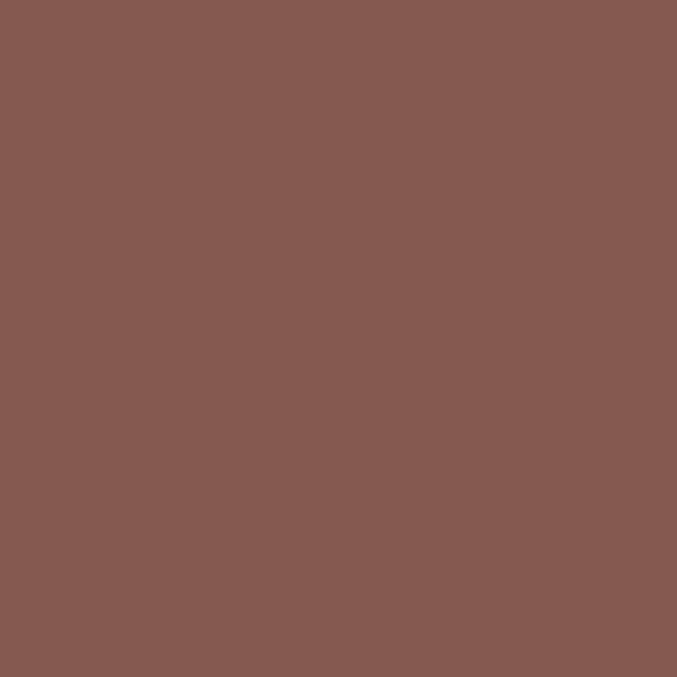 SW 6054 Canyon Clay