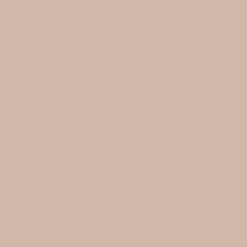 SW 6058 Likeable Sand