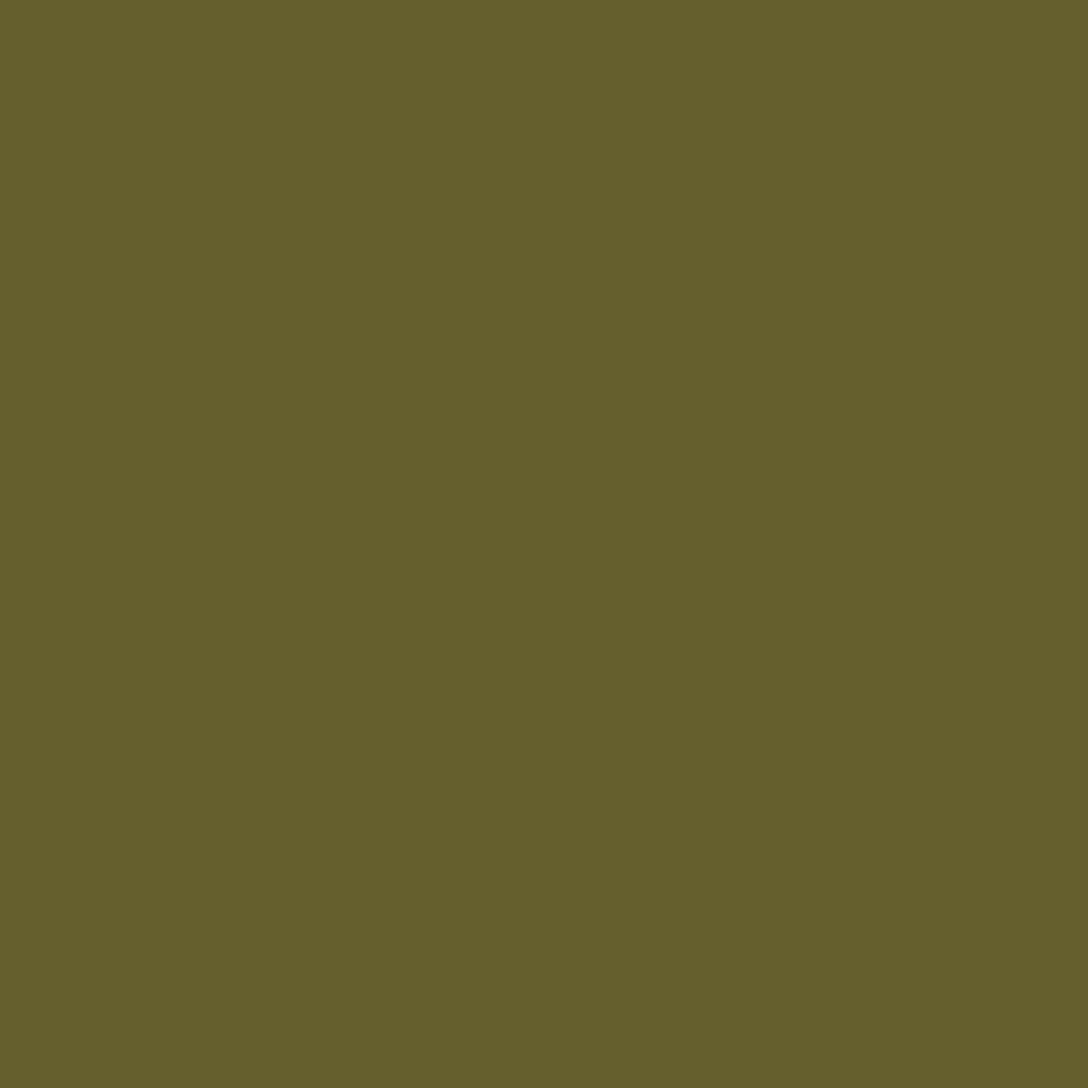 SW 6419 Saguaro