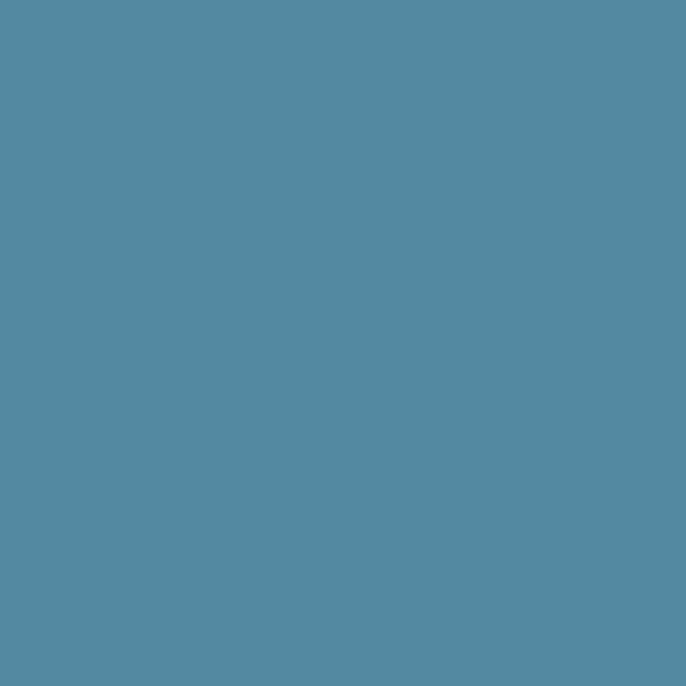 SW 6508 Secure Blue