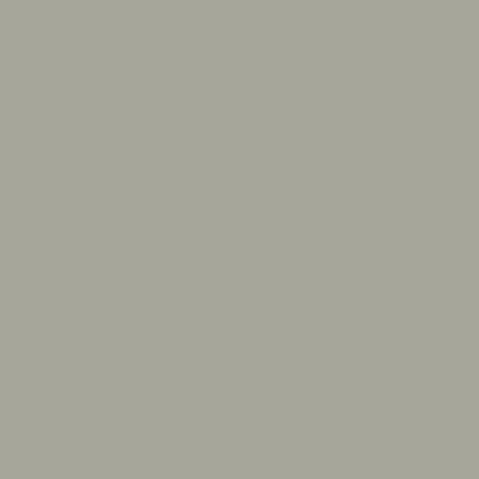 SW 6199 Rare Gray