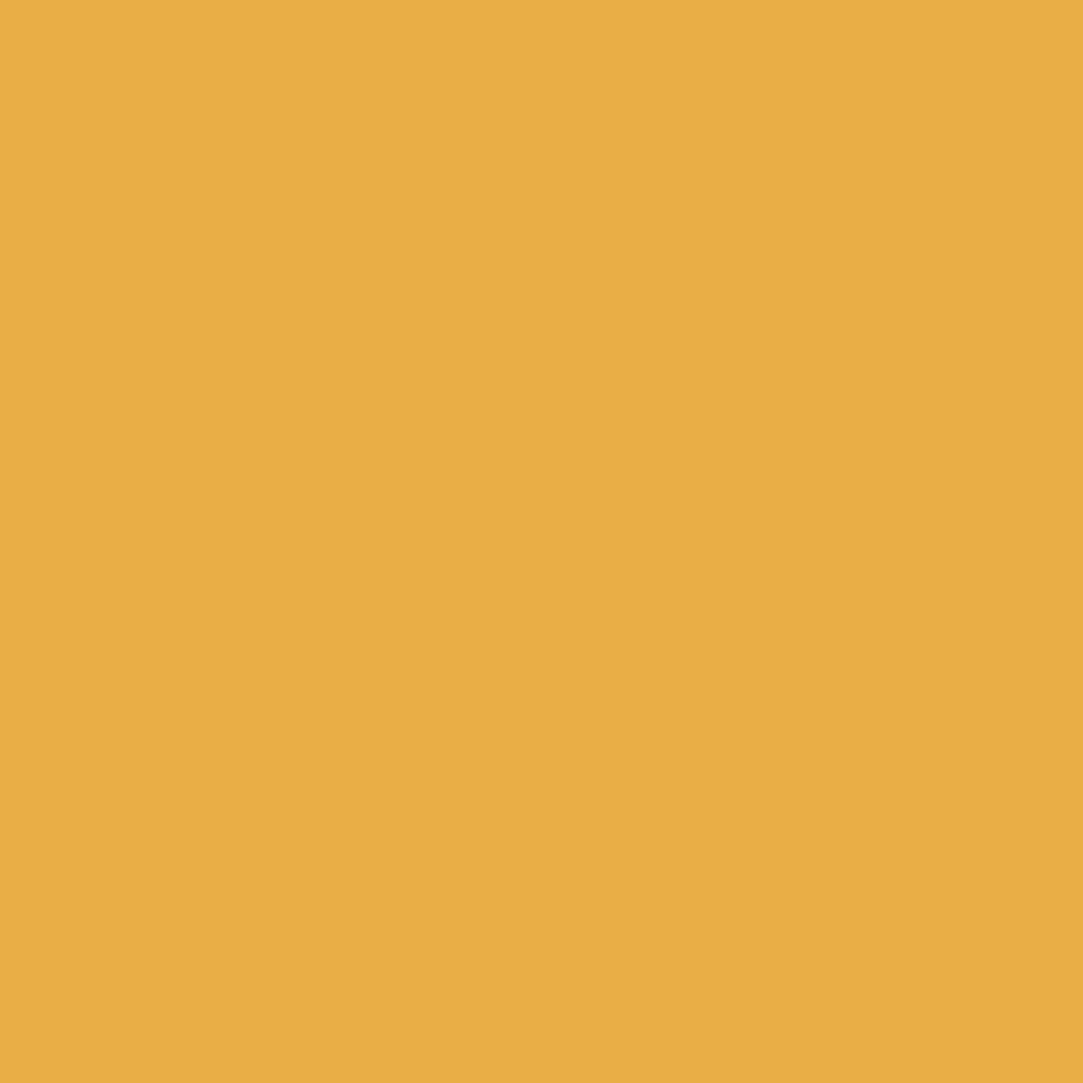 SW 6684 Brittlebush