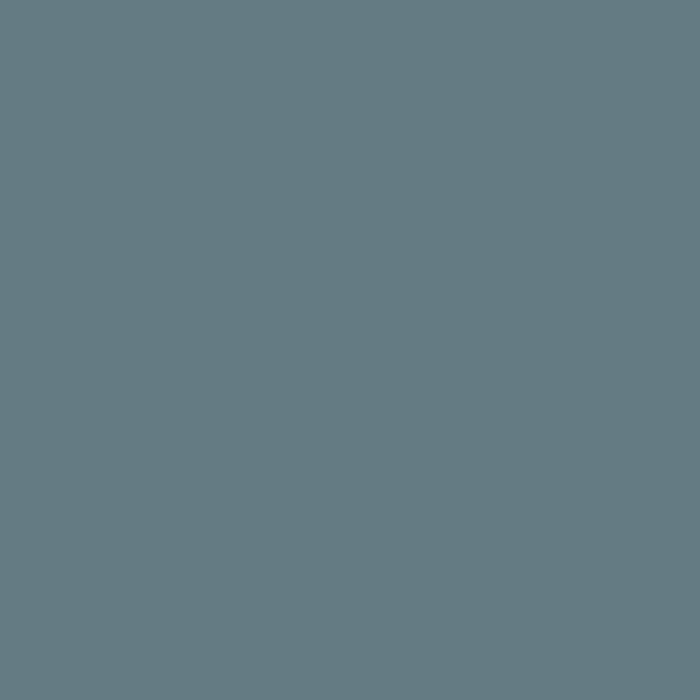 SW 7619 Labradorite