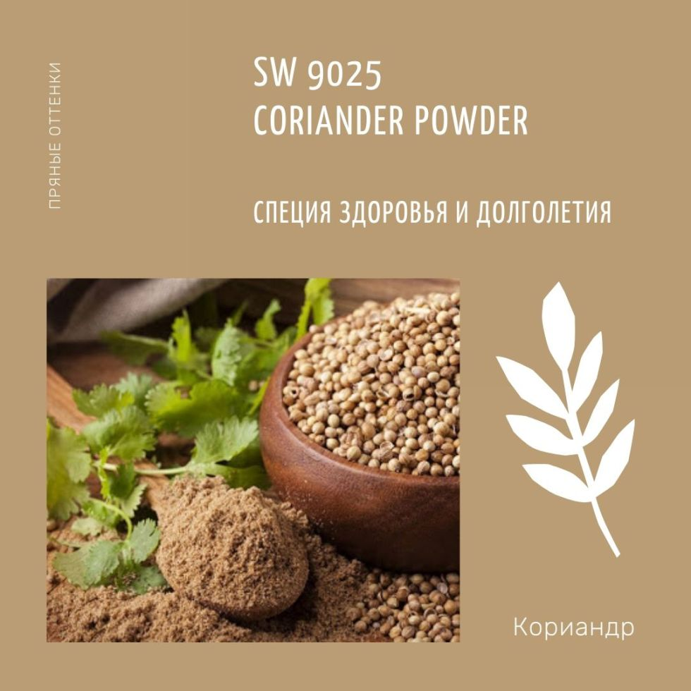 SW 9025 Coriander Powder